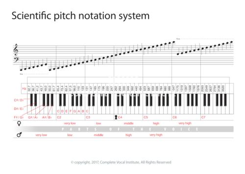 uk-charts-webshop-16-47